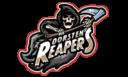 Dorsten_Reapers_Logo